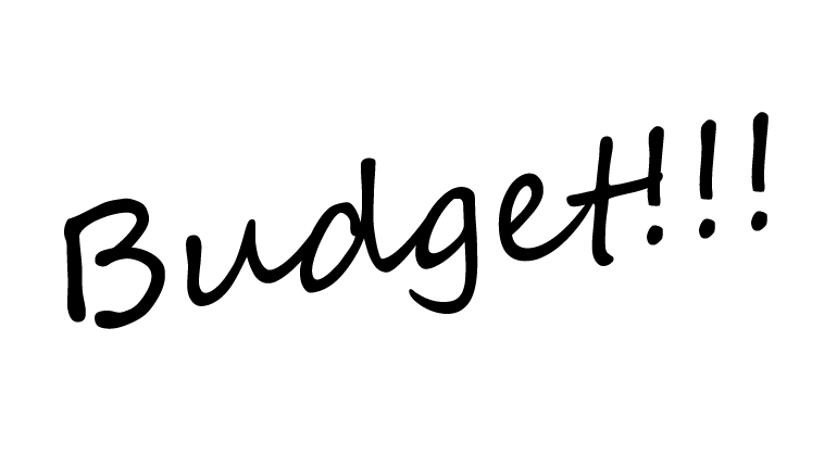 what budget